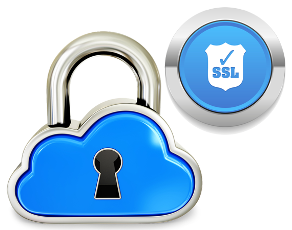 SSL SSL Standard package