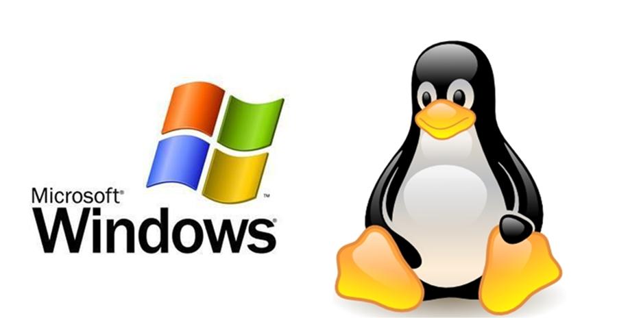 אחסון אתרים Linux או Windows