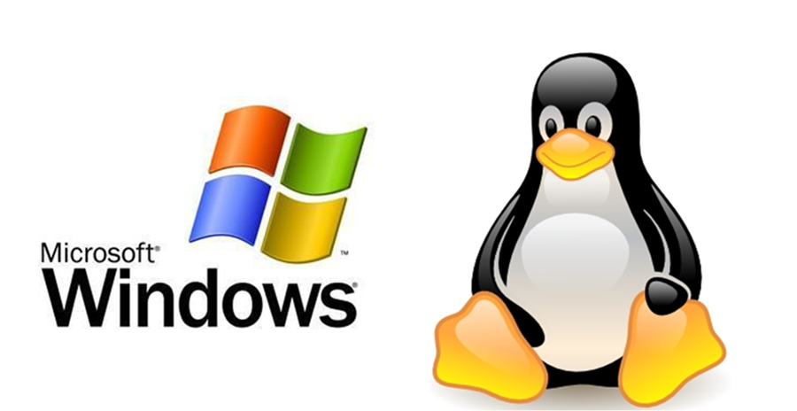 Windows or Linux?